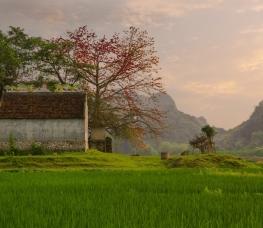 Počasie Vietnam