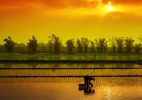 Mekong - rieka deväťhlavého draka
